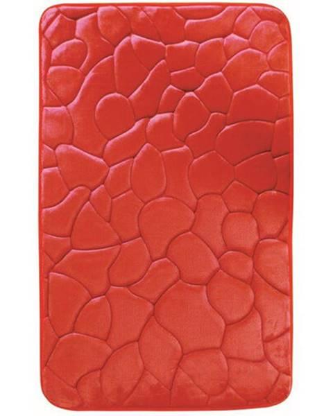 Červený koberec Concept